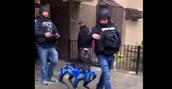 Robot Anjing Polisi Menyusupi Pengguna Internet |  Itu seekor anjing, ini robot, ini polisi: Pengguna internet dirayapi oleh anjing robot Departemen Kepolisian New York [WATCH]