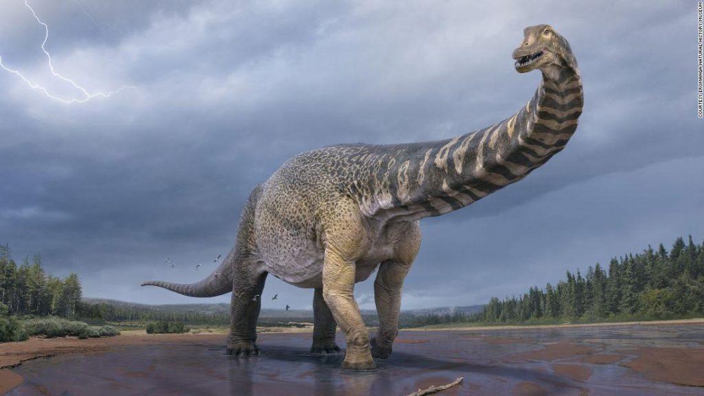 "Dinosaurus terbesar di Australia ""Cooper"" adalah titanosaurus berlantai dua dengan lapangan basket yang panjang"