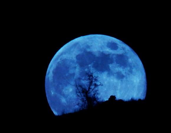 Warna bulan purnama yang besar adalah biru dengan tanaman gurun yang teduh.