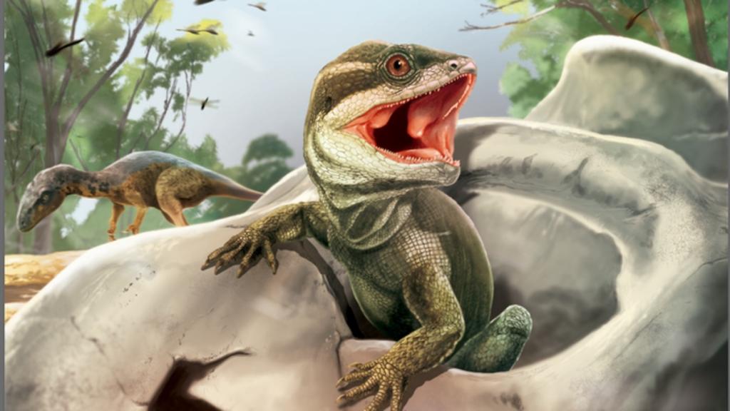Reptil fosil yang menarik memberikan petunjuk tentang asal usul ular dan kadal