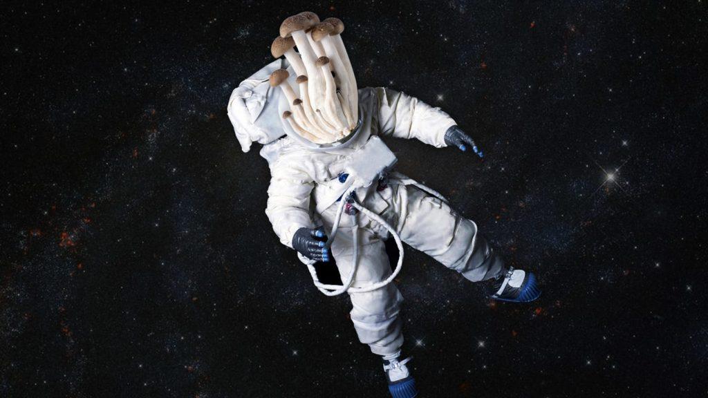 Penumpang gelap yang membuat stasiun luar angkasa bau pertama